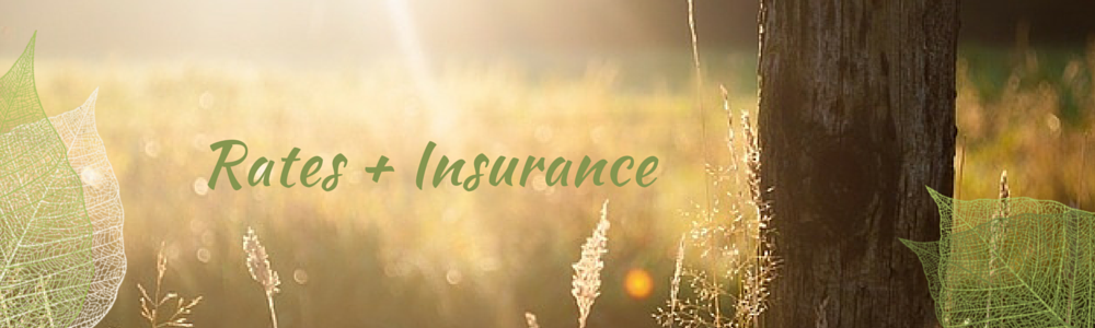 Rates + Insurance